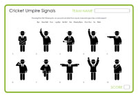 Cricket Umpire Signals